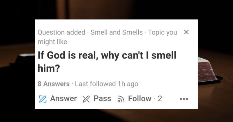 A collection of people acting like complete lunatics on Quora.