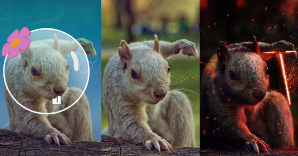 photoshop battle of a badass squirrel with cool superhero pose