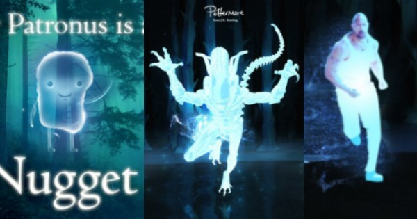 Some People Chose Their Own Patronuses and They Are Much Better Than the Real Ones