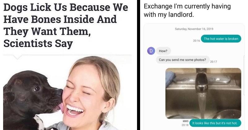 Funny random memes, tweets, and Tumblr posts