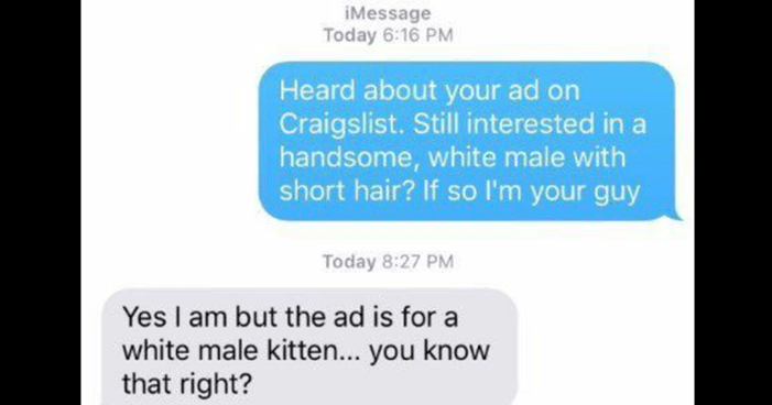 funny craigslist troll, cat, rabbit, the incident, trolling