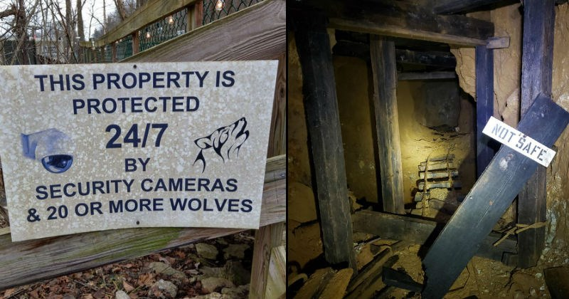 Scary warning signs and signs that are scarier than intended.