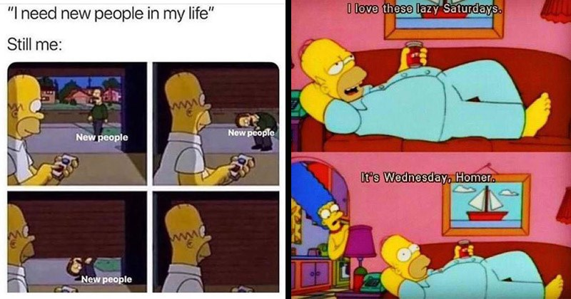 Funny memes about Homer Simpson