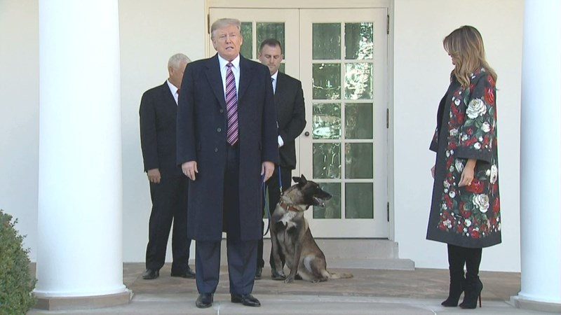 hero dog with president trump, hero dog at the white house