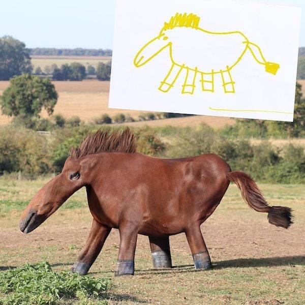 animals imagination drawings realistic