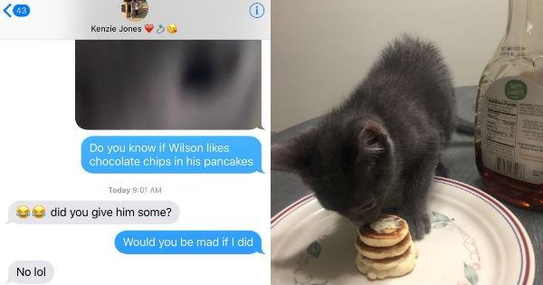 pancake for the kitten thread