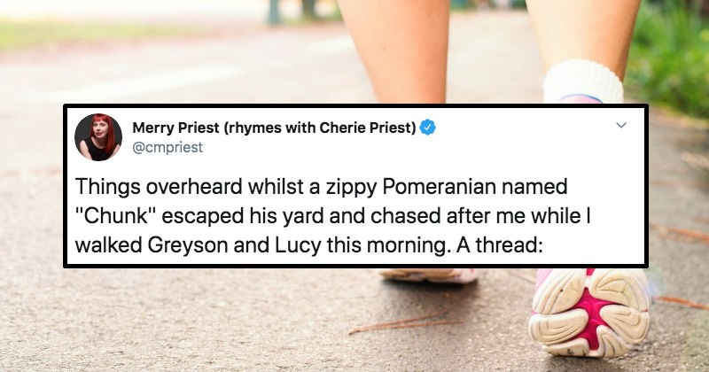 Woman tells hilarious story about a Pomeranian dog in funny Twitter thread.