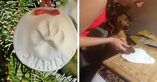 paw prints ornaments cats