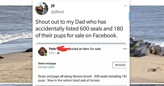 seals tweets funny dad