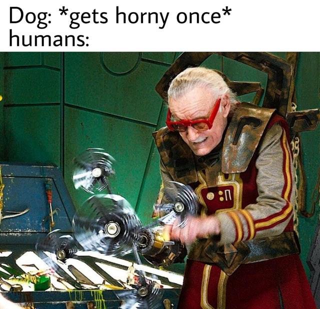 large dump of memes