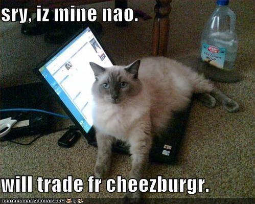 Cheezburger Image 986882816
