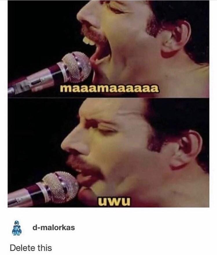 memes, funny memes, random memes, meme dump, dank memes, twitter, funny tweets