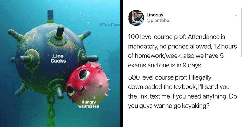 funny random memes, school memes, relatable memes, tumblr posts, dad jokes, relatable tweets, stupid