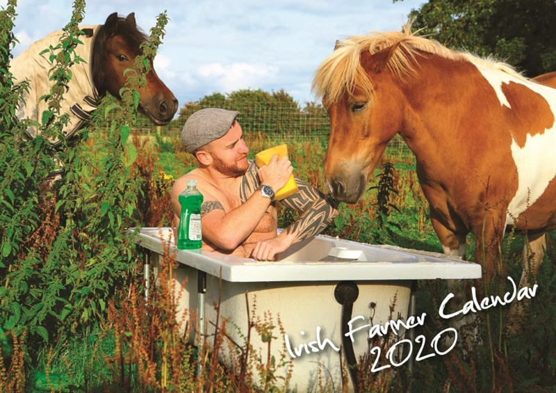 calendar 2020 irish farm farm animals funny animals - 9934597