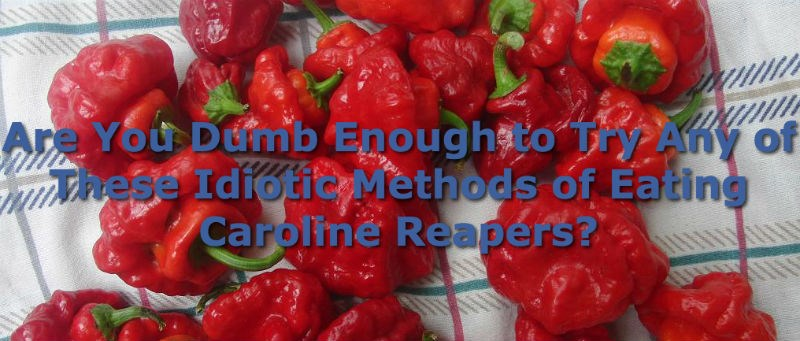 list carolina reapers spicy peppers dumb Video - 997125