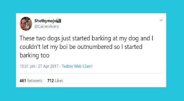 funny dog related tweets by dog owners   Text - Shotbymojo @CainenAvery These two dogs just started barking at my dog and I couldn't let my boi be outnumbered so I started barking too 10:31 pm · 27 Apr 2017 · Twitter Web Client 712 Likes 461 Retweets
