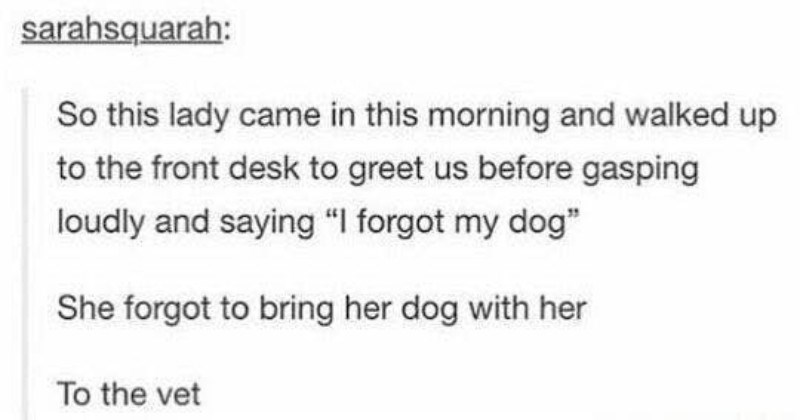 "A collection of comedy gold from various people on Tumblr | this lady came this morning and walked up front desk greet us before gasping loudly and saying forgot my dog"" She forgot bring her dog with her vet"