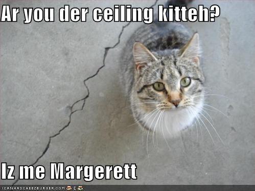 Cheezburger Image 998679296