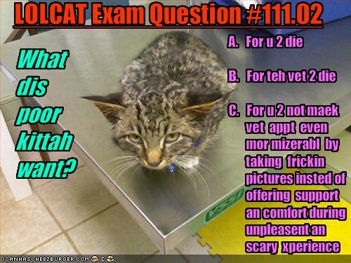 LOLCAT Exam Question #111.02