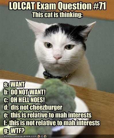 LOLCAT Exam Question #71