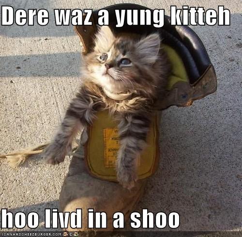 Dere waz a yung kitteh  hoo livd in a shoo