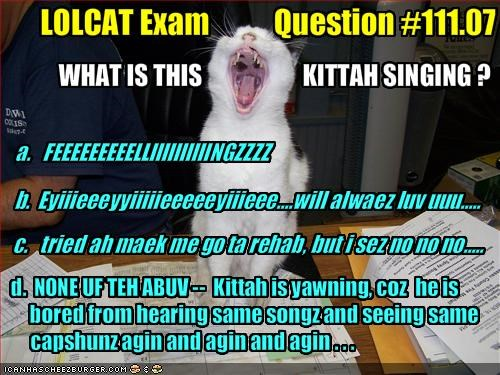 LOLCAT Exam           Question #111.07