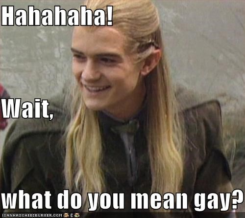 Hahahaha! Wait,  what do you mean gay?