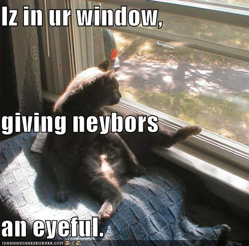 Iz in ur window, giving neybors an eyeful.