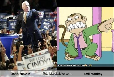 John McCain TotallyLooksLike.com Evil Monkey