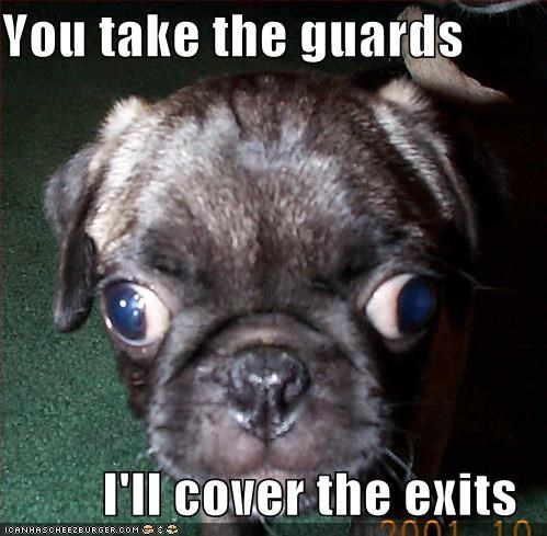 You take the guards  I'll cover the exits