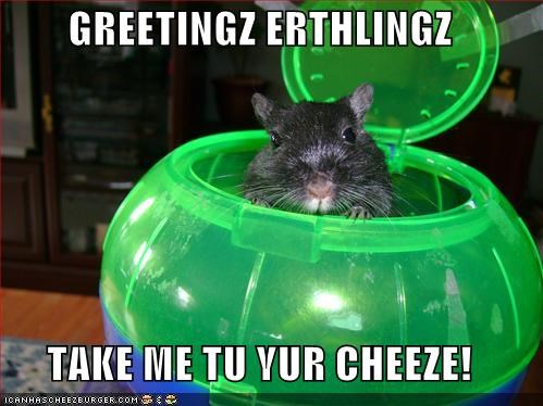 GREETINGZ ERTHLINGZ  TAKE ME TU YUR CHEEZE!