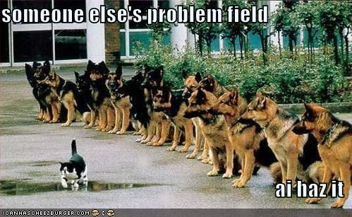 "I Can Haz Cheezburger image: Cat sitting in front of many dogs, saying ""someone else's problem field - ai haz it"""