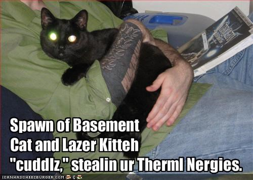 Spawn of Basement 