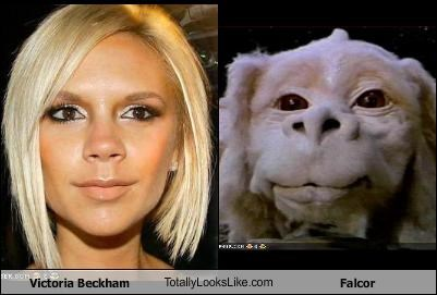 Victoria Beckham TotallyLooksLike.com Falcor