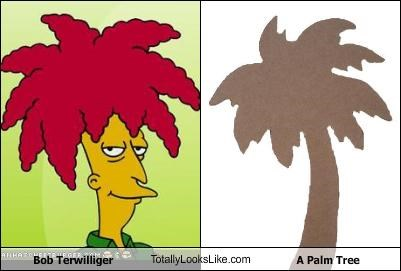 Bob Terwilliger,cartoons,Palm Tree,plants,the simpsons