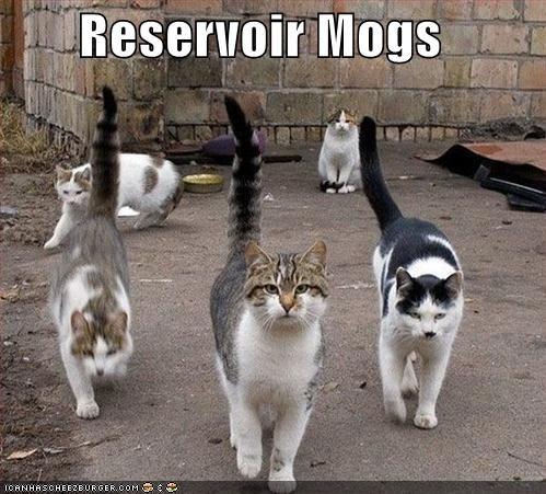 Reservoir Mogs