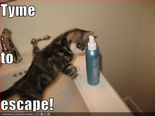 Tyme to escape!