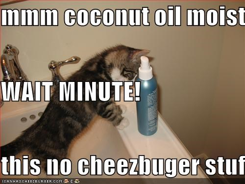 mmm coconut oil moistener WAIT MINUTE!  this no cheezbuger stuff