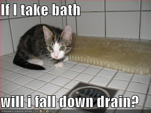 If I take bath  will i fall down drain?