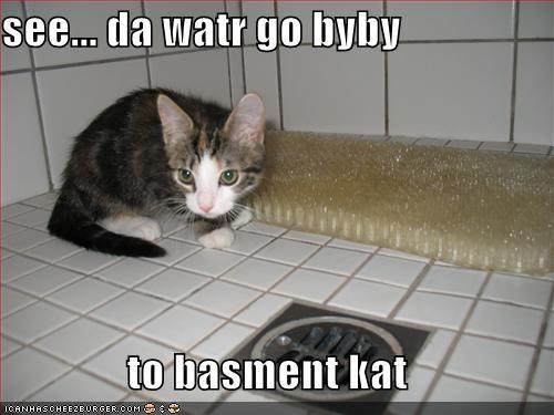 see... da watr go byby  to basment kat
