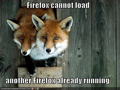 Firefox cannot load  another Firefox already running