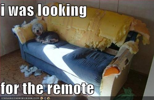i was looking   for the remote