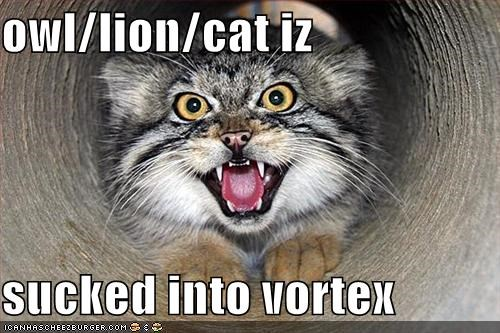owl/lion/cat iz  sucked into vortex