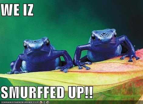 WE IZ  SMURFFED UP!!