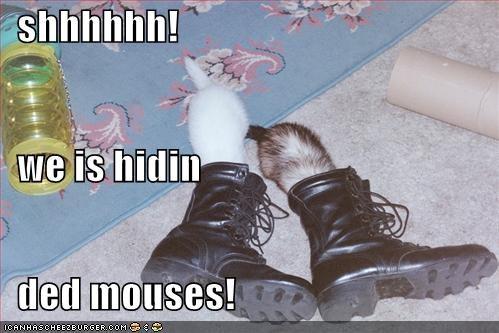 shhhhhh!    we is hidin    ded mouses!