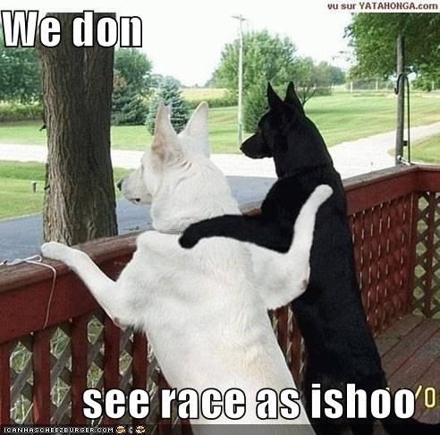 We don see race as ishoo