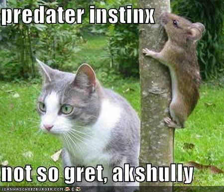 predater instinx  not so gret, akshully