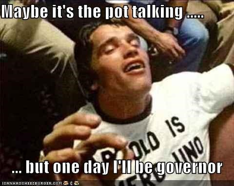 Maybe it's the pot talking .....  ... but one day I'll be governor