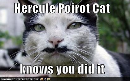 Hercule Poirot Cat  knows you did it