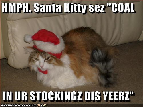 "HMPH. Santa Kitty sez ""COAL  IN UR STOCKINGZ DIS YEERZ"""